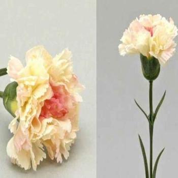 Seidenblume Nelke, Trauernelke in rosa. 7cm, 50cm. 1 St bei Trauer Shop