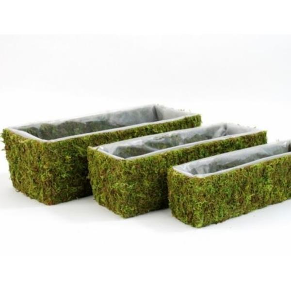Pflanzgefase aus moos